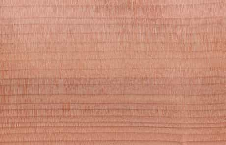 Cèdre du Liban WoodenMe