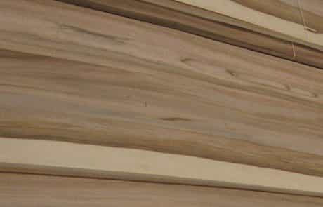 Orme du Japon WoodenMe