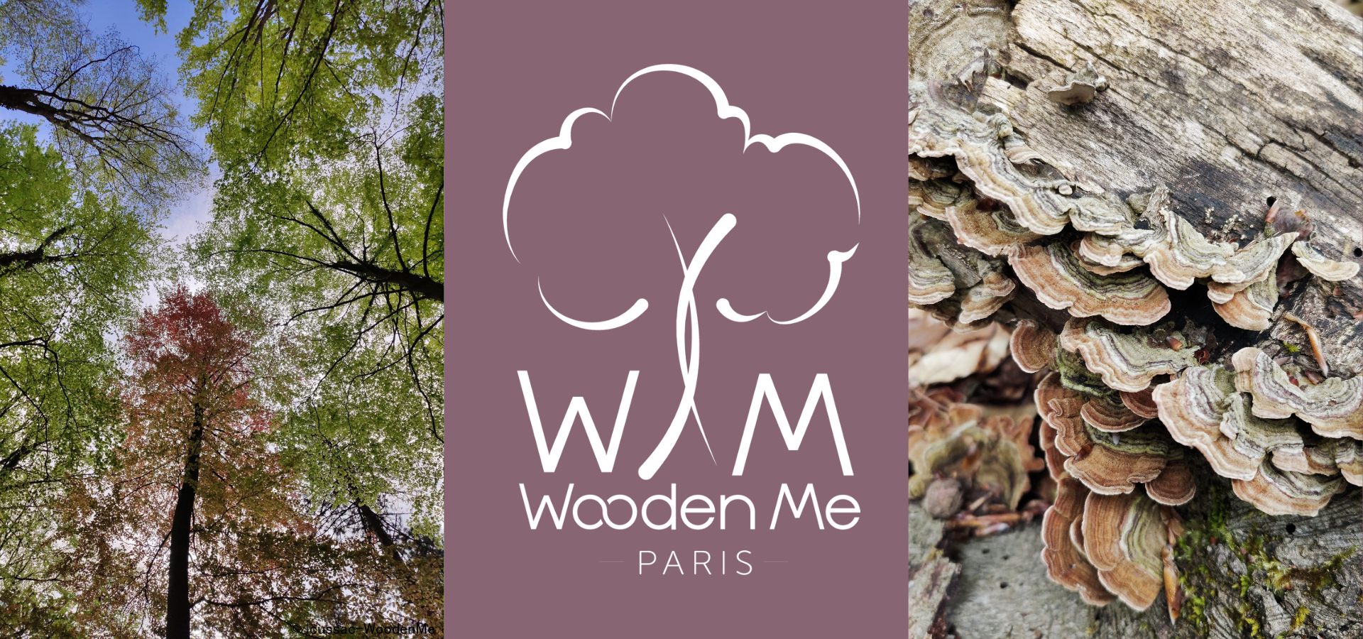 Couverture Concept WoodenMe